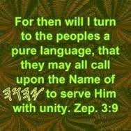 pure-language
