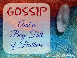 gossip feathers