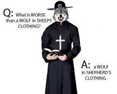 wolf shepherd