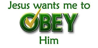 wealth obey