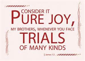 pure-joy